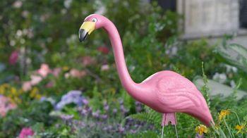 Lowe's TV Spot, 'Beautiful Flamingo' - 1593 commercial airings