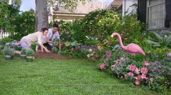 Lowe's TV Spot, 'Beautiful Flamingo' - Thumbnail 1