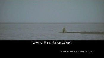 Center for Biological Diversity TV Spot, 'Polar Bear' - Thumbnail 9
