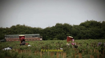 Bernie 2016 TV Spot, 'Servidor Público' [Spanish] - Thumbnail 4