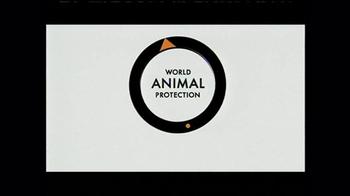 World Animal Protection TV Spot, 'Where They Belong' - Thumbnail 7