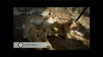 World Animal Protection TV Spot, 'Where They Belong' - Thumbnail 3