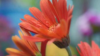 The Home Depot TV Spot, 'Evolving Gardens: Soil' - Thumbnail 2