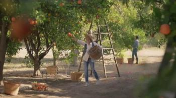 Garanimals TV Spot, 'Grove' - Thumbnail 3