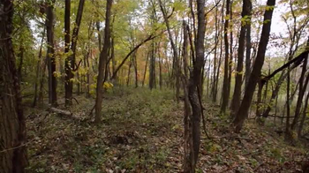Whitetail Properties TV Spot, 'Large Hunting and Fishing Tract With Cabin' - Thumbnail 2