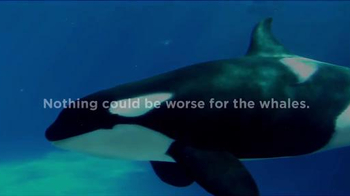 SeaWorld TV Spot, 'The New Future of SeaWorld' - Thumbnail 2