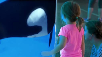 SeaWorld TV Spot, 'The New Future of SeaWorld' - Thumbnail 6