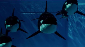 SeaWorld TV Spot, 'The New Future of SeaWorld' - Thumbnail 7
