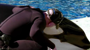 SeaWorld TV Spot, 'The New Future of SeaWorld' - Thumbnail 9