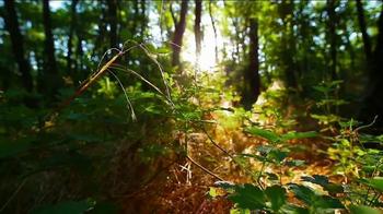Benjamin Moore TV Spot, 'Inspired by Nature' - Thumbnail 1