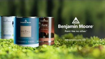 Benjamin Moore TV Spot, 'Inspired by Nature' - Thumbnail 9