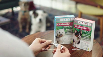 PetSmart TV Spot, 'Protect Your Dog' - Thumbnail 3