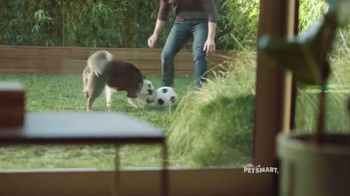 PetSmart TV Spot, 'Protect Your Dog' - Thumbnail 4