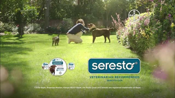 Seresto Large Dog TV Spot, 'Non-Greasy Collar' - Thumbnail 10