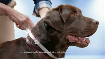 Seresto Large Dog TV Spot, 'Non-Greasy Collar' - 4313 commercial airings