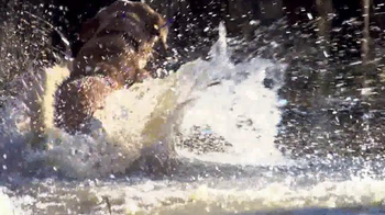Bass Pro Shops Dog Days Family Event TV Spot, 'Life Jacket and Reels' - Thumbnail 3