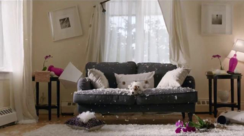 Angie's List TV Spot, 'Good Dog' - Thumbnail 6