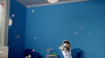 Fresh Step Odor Shield TV Spot, 'Odor Control Worth Celebrating' - Thumbnail 1