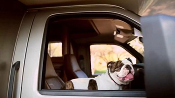 Go RVing TV Spot, 'Dogs'