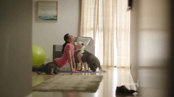 PetSmart TV Spot, 'Healthy Choices' Song by Queen - 1061 commercial airings