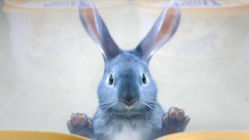 Blue Bunny Ice Cream TV Commercial, 'Freezer Aisle' Song