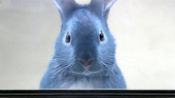 Blue Bunny Ice Cream TV Spot, 'Freezer Aisle' Song by Frankie Valli - Thumbnail 1