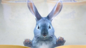 Blue Bunny Ice Cream TV Spot, 'Freezer Aisle' Song by Frankie Valli - 4115 commercial airings