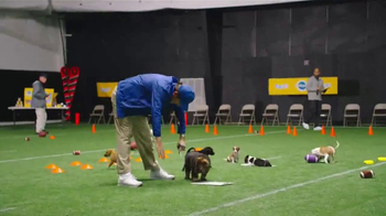 Pedigree Puppy TV Spot, 'Puppy Bowl Tryouts No. 9: Gotta Be A Puppy' - Thumbnail 4