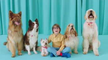 PETCO TV Spot, 'Getting to Know You' Song by Baraka May - 2371 commercial airings