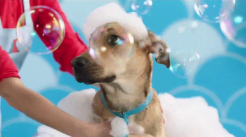 PETCO TV Spot, 'Getting to Know You' Song by Baraka May - Thumbnail 1