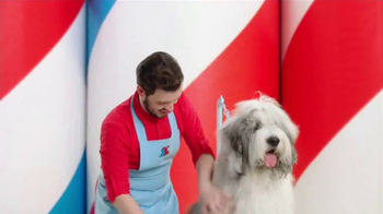 PETCO TV Spot, 'Getting to Know You' Song by Baraka May - Thumbnail 2