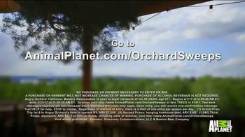 Angry Orchard TV Spot, 'Animal Planet: Treehouse Masters Sweepstakes'
