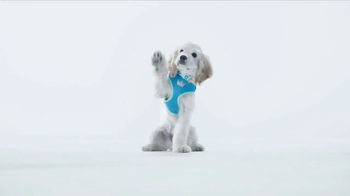 PetSmart Puppy Love Event TV Spot, 'Puppy Guide' - Thumbnail 1