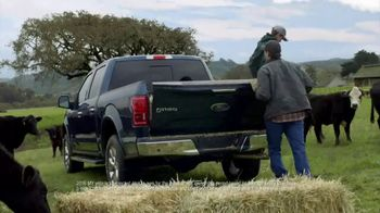 Ford TV Spot, 'Protective and Hard Working' [T1]