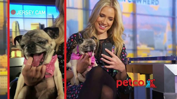 PETCO TV Spot, 'Fox Sports 1: Jersey' Featuring Kristine Leahy - Thumbnail 1