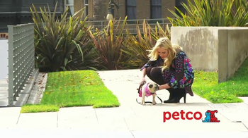 PETCO TV Spot, 'Fox Sports 1: Jersey' Featuring Kristine Leahy - Thumbnail 4