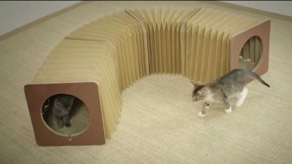 accordion cat tunnel tv commercial 39 cat tastic good time 39. Black Bedroom Furniture Sets. Home Design Ideas