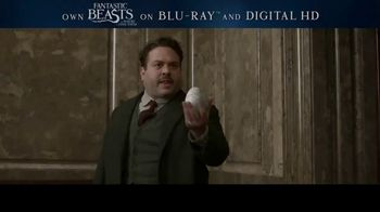 Fantastic Beasts and Where to Find Them Home Entertainment TV Spot
