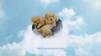 The Company Store TV Spot, 'Dreamy' - Thumbnail 8