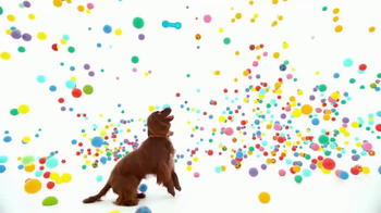 NexGard Chewables for Dogs TV Spot, 'La felicidad de los perros' [Spanish] - Thumbnail 2