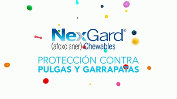 NexGard Chewables for Dogs TV Spot, 'La felicidad de los perros' [Spanish] - Thumbnail 3