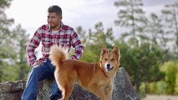 Purina Dog Chow TV Spot, 'Oddie y Django' [Spanish] - Thumbnail 6