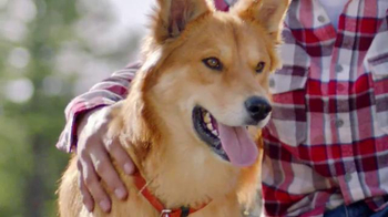 Purina Dog Chow TV Spot, 'Oddie y Django' [Spanish] - Thumbnail 9