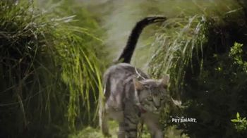 PetSmart TV Spot, 'Fun Outside' Song by Queen - 394 commercial airings