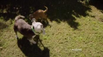 PetSmart TV Spot, 'Fun Outside' Song by Queen - Thumbnail 1