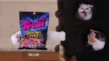 Trolli Sour Brite Crawlers TV Spot, 'Cat-Fro Outshines James Harden' - Thumbnail 6
