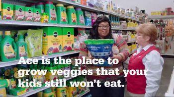 ACE Hardware TV Spot, 'Vegetable Garden' - Thumbnail 4