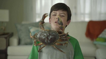 Joe's Crab Shack Texas Steampot TV Spot, 'Crabs: For Pots Not Pets' - Thumbnail 2