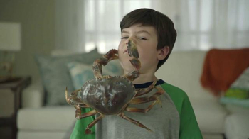 Joe's Crab Shack Texas Steampot TV Spot, 'Crabs: For Pots Not Pets'