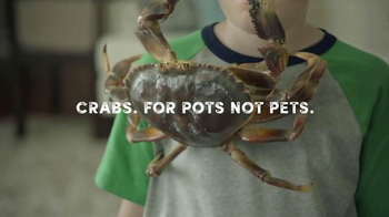 Joe's Crab Shack Texas Steampot TV Spot, 'Crabs: For Pots Not Pets' - Thumbnail 5